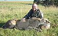 Lion Hunted in Free State