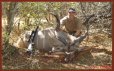 Cliff with Kudu