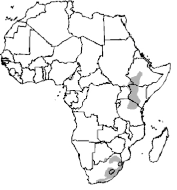 Mountain Reedbuck Distribution