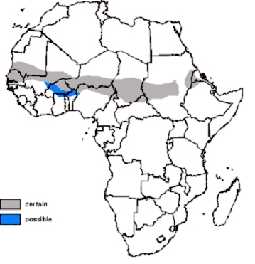 Red Fronted Gazelle Distribution